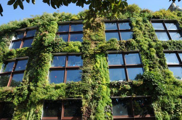 ville-verte-vegetalisation_shutterstock_82951156-e1508425491560